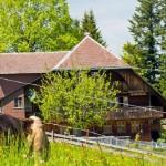 Liens - Agriculture Bio - Bio-Naturel Romandie
